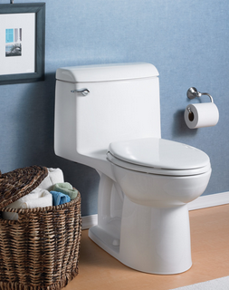 10 Best One Piece Toilet Reviews Updated 2019
