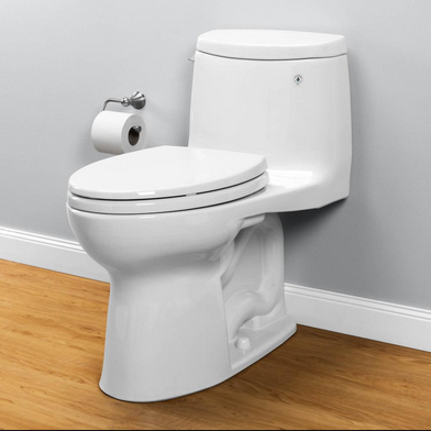 2019 Best Toilet Reviews Don T Flush Your Money Down