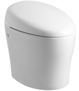 2019 S Best Bidet Toilet Seats Reviews Amp Buying Guide