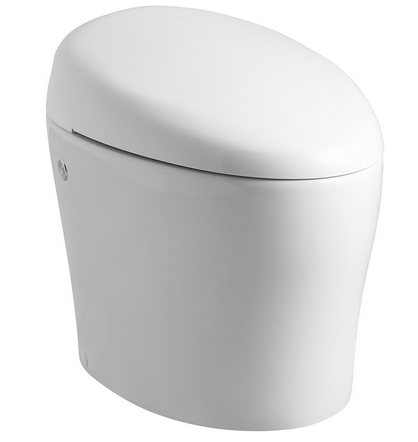 2019's BEST Bidet Toilet Seat Reviews - Your Ultimate Buying Guide!
